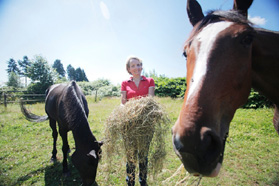 Epona stable horseback riding vancouver