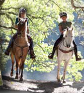 Safe Trail Riding lessoons program